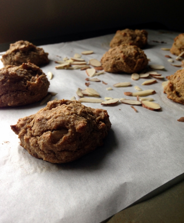 Almond Coconut Cookies – Nutty for Life_1