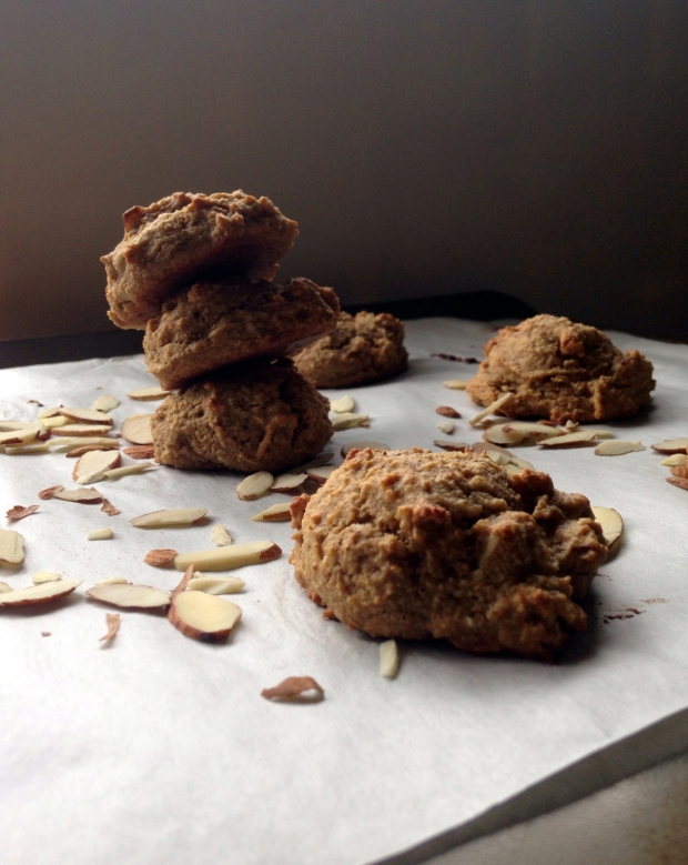 Almond Coconut Cookies – Nutty for Life_2